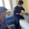 モンゴルの病院での活動2(入院リハ編)