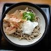 よってっ亭 名田庄のおろしそばで夏爽快!自然薯ジェラートも食べてみた!
