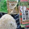 玄米のおにぎり🍙