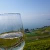 ぶどう畑のオトナ婚。熟成されたカップル&スイスワインでほろ酔い気分