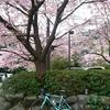 自転車旅行きました 小田原編