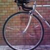 なぜ自転車は倒れないのか(2)