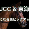 【AJCC&東海S】気になる馬ピックアップ