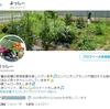 Twitterフォロワー1000人達成!~家庭菜園とTwitterのいい関係~