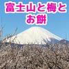 曽我梅林の梅まつりは富士山とお餅もよかった話~明日2月11日は流鏑馬もあります