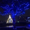 クリスマスイルミネーション 🎅開始🎄🌟✨目指せ‼️子育て支援マンション