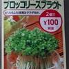 ブロッコリースプラウト水耕栽培の臭い対策