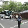 6年生 修学旅行⑤ 奈良公園班別研修 興福寺で解散