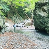 渓流と石清水、イワナの命