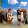 今日も象さんと仲良しPhoto by Neeちゃん