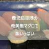 奄美大島の黒マグロを鹿児島空港で食べる「エアポート山形屋彩華」ですしざんまい