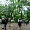 城山探鳥例会 2014年7月