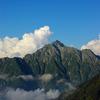 剣岳・大日岳の花々(1)   2010.8.16-19