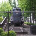 GW期間中、こどもが乗れるミニSLで有名な世田谷区立世田谷公園をお写んぽ。した話し。