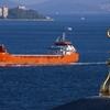 米国等のホルムズ海峡での海上護衛行動で日本はどうする?
