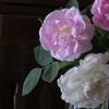 薔薇のあるベランダ