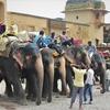 【旅の1枚シリーズ】インド ジャイプル アンベール城 ~隣町はあちらです。~