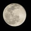 2021年最初の満月「ウルフムーン」を気にかけて!