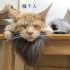 猫仙人と通りすがりのライオンにビビるレムち