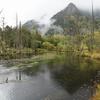 上高地散策 梓川左岸線-1 (河童橋~明神池)
