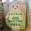 こどもちゃれんじぷち8月号付録🌿剥がれやすいトイレちゃんシール対策DIY