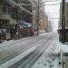 雪面のトビウオ