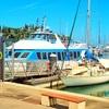 ニューカレドニア⑤ 【バスの乗り方】アンスバタからメトル島へ行く水上タクシー(ボート)乗り場への行き方
