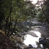 渓谷の旅そして嵐山(京都一周トレイルの旅 おわり)