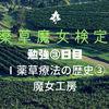 【勉強】『薬草魔女検定』勉強③日目「Ⅰ薬草療法の歴史③」