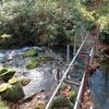 ◆'18/11/11     晩秋の鶴間池④…勘助坂を登って。