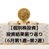 【個別株投資】投資結果振り返り(6月第1週~第2週)