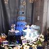 2018/11/22 特別水槽「トト・クリスマス」