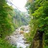 震災後半年経過して、仙台からも以前と同じように漢方相談のお客様も増えてきました。