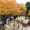 初めての結婚相談所レポート|東京都新宿区