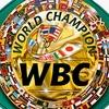 【WBC暫定王座決定戦】戯れ言――亀田和毅のSバンタム級世界戦について【三兄弟2階級制覇へ】