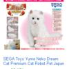 かなりめっちゃ利益 発見セガの夢猫という不明な野良猫