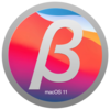 macOS Big Sur 11.1 Beta 2 (20C5061b)