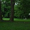 土曜日の公園