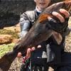 みんなの北海道釣り情報【室蘭市近辺】ほぼ最大サイズのアイナメが釣れた!実際の釣り方について詳しく調査してみた