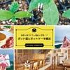 2019年11月9日(土)平塚ポット苗婚活イベント開催!