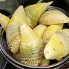 春なのでタケノコをたくさん食べました feat.小林銅蟲さん