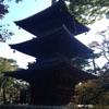 東京旅行二日目(6)。井伊家の菩提寺、豪徳寺。見どころいろいろ