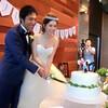 Y+S WEDDING♡♡-披露宴2 cake cut♡-