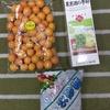 【のゆ】金柑酒漬けるよ!
