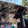 京都・光明寺へ行ってきました しかし遅かった感
