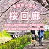【花見でGO! 】見沼桜回廊ポタリング【桜の後は…】