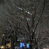 雪のページェント