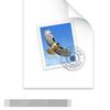 Mac OS CatalinaのTime Machineバックアップの拡張子は.bukcupbundleが正しい