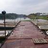 印旛水系の将監川