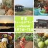 【参加者募集!】農業フィールドワークin Nepal!!!